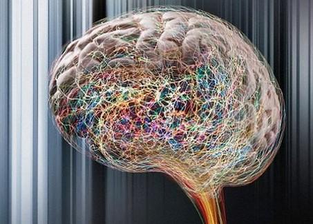 诊断成人癫痫病的方法有哪些