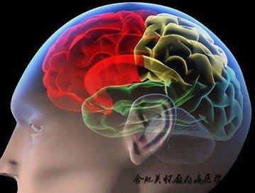 癫痫病的诊断依据的是什么